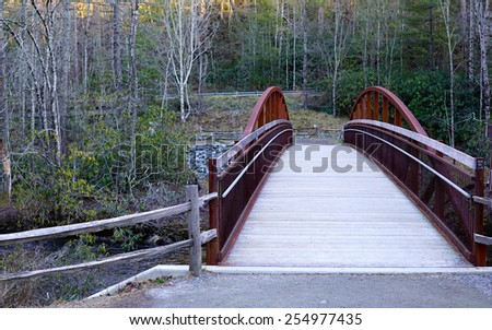 Wooden Bridge in the Forest                                - stock photo