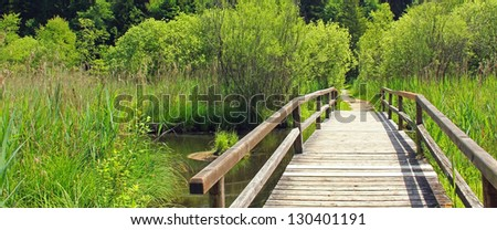 wooden bridge in the springtime wetlands, nature protection area - stock photo