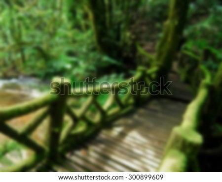 Wooden bridge in to the jungle ,thailand - stock photo