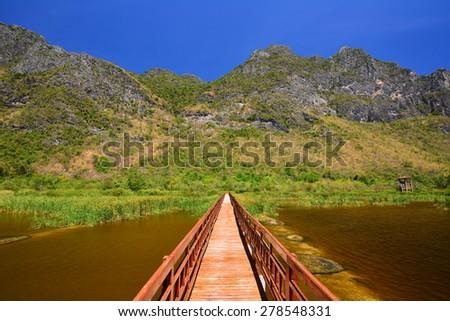 wooden bridge on wetland and blue sky background - stock photo
