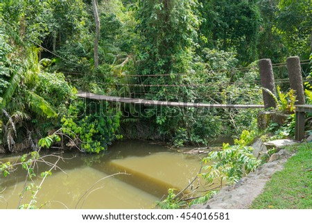 Wooden bridge over river with brown water in forest