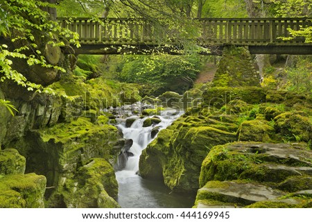 Wooden bridge over the Shimna River in Tollymore Forest Park in Northern Ireland. - stock photo