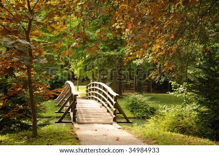 Wooden bridge over the stream and first autumn leaves - stock photo
