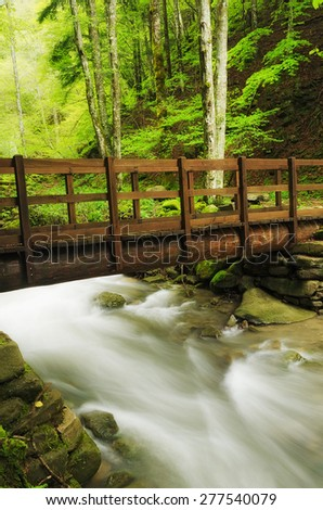 wooden bridge over the stream in the natural park - stock photo