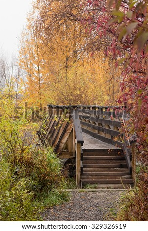 Wooden Bridge over Williams Lake Surrounded By Fall Leaves