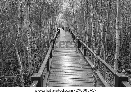 Wooden bridge the forest mangrove at Petchaburi, Thailand processed in tinted photo in black tone - stock photo
