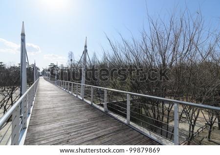 Wooden bridge under the sun - stock photo