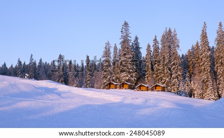 Wooden cabins this side a forest by the side of a down hill slope. Early morning lit. - stock photo