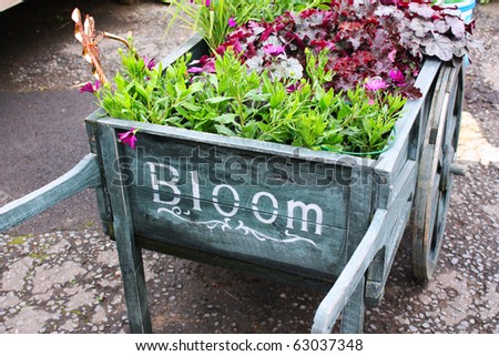 Wooden cart with plants - stock photo