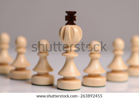 wooden chess pieces on grey background - stock photo