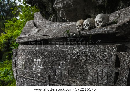 Wooden coffin with skulls in Tana Toraja's traditional cemetery in a forest. Sulawesi island, Indonesia - stock photo