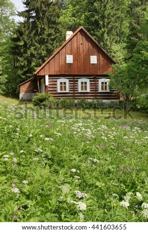 Wooden cottage in summer - stock photo