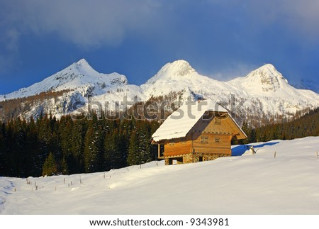 Wooden cottage in the Alps - stock photo