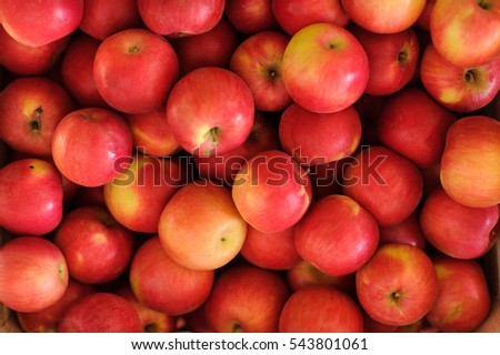 Wooden crate box full of fresh red apples