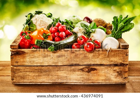 Wooden crate of farm fresh vegetables with cauliflower, tomatoes, zucchini, turnips and colorful sweet bell peppers on a wooden table outdoors in sparkling sunlight on greenery - stock photo