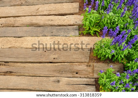 wooden deck trail with lavender. top view - stock photo
