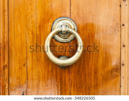 wooden door with brass door knocker - stock photo