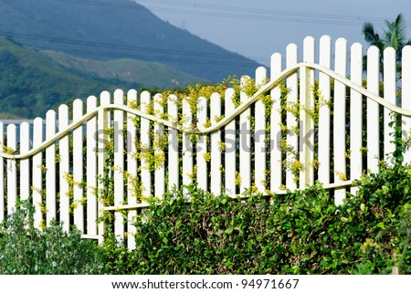 Wooden fence in garden with plant - stock photo