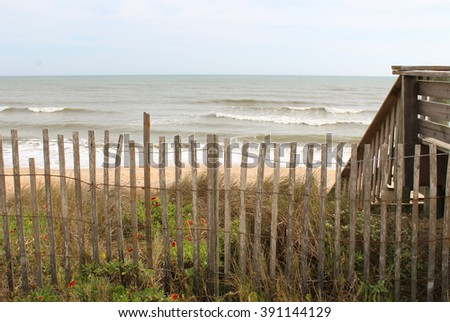 Wooden Fence, Weeds and Wildflowers with Beach Background