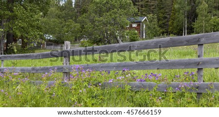 Wooden fence, wildflowers, cranes-bill on a slope. Homestead, timber building in the background.