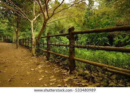 Wooden fence with trees