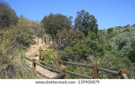 Wooden foot bridge and trail leading up a hillside, California