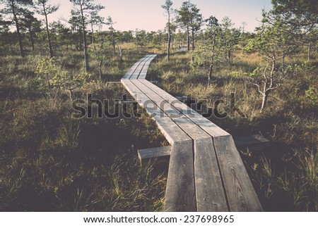 wooden footpath on the bog with autumn colored flora - retro, vintage style look - stock photo