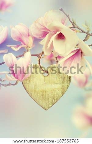Wooden heart hanging on a branch of magnolia.