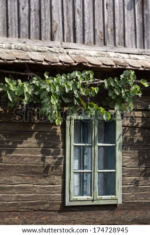 Wooden house and window with grapevine border growing on top of it - stock photo