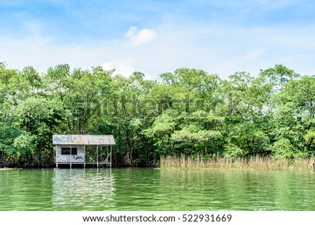 Wooden house on stilts with tin roof on riverbank in Guatemala, Central America