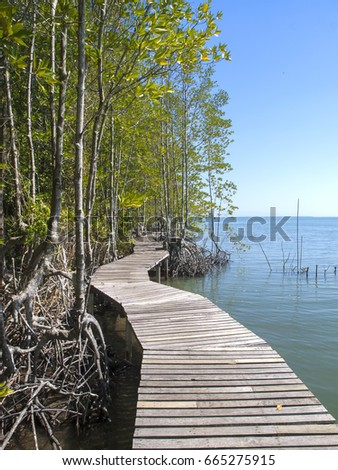 Wooden jetty along the mangroves over the ocean at Black Sand Beach eco-walk, near Trat, east Thailand