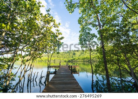 Wooden jetty at the end of a broad-walk across mangroves forest in Borneo. - stock photo