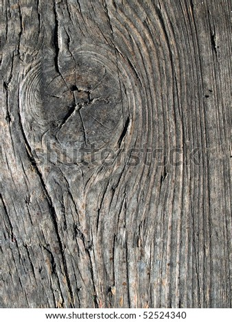 Wooden knot closeup background. - stock photo