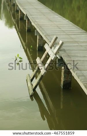 Wooden Ladder and Bridge among Mangrove trees 2