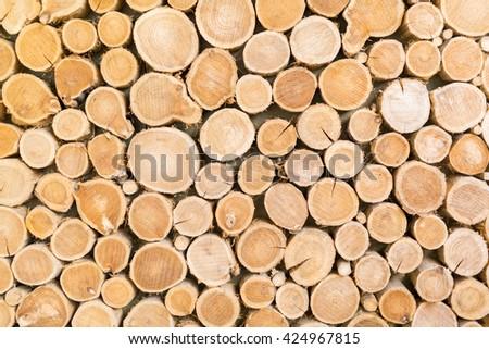 Wooden log texture - stock photo