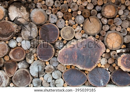 wooden logs background, top view  - stock photo