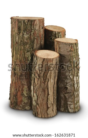 wooden logs. firewood - stock photo