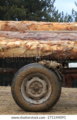 Wooden Logs on a horse cart in countryside. - stock photo