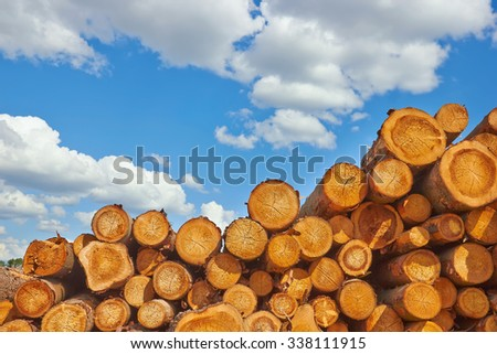 Wooden Logs with blue sky on Background - stock photo