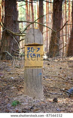 Wooden marker signpost in a forest