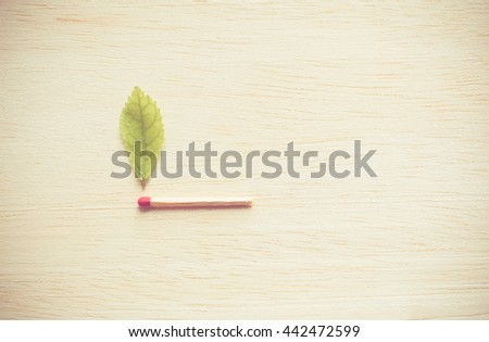 Wooden match with green leaves on wood background,Many red head matches with green leaves on wood background,Clean energy concept,Green energy concept,Eco energy concept. - stock photo