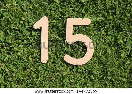 wooden number 15 on a grass and clover background  - stock photo