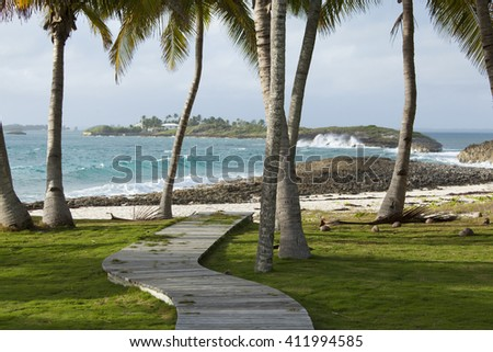 Wooden path and palm trees to Caribbean in Bahamas - stock photo
