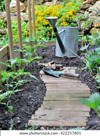 wooden path in a garden with watering can  - stock photo