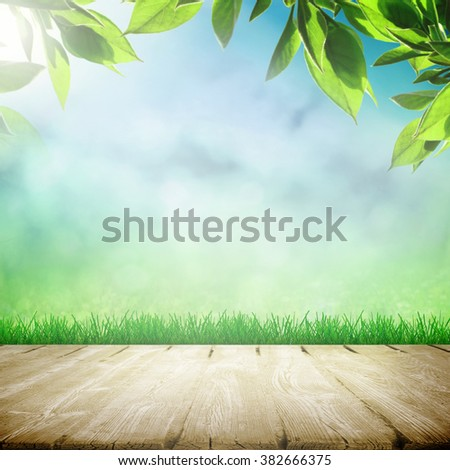Wooden path in spring sunlight day - stock photo
