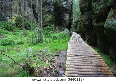 Wooden path leading through forest and rocks