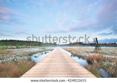 wooden path on swamp at misty sunrise, Drenthe, Netherlands - stock photo