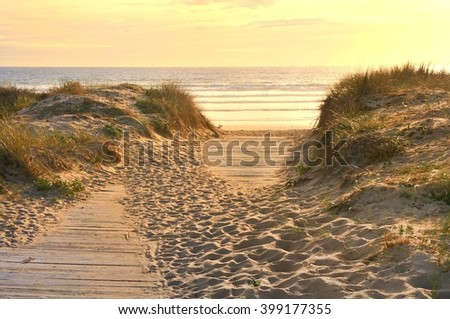 wooden path through the dunes to the beach - stock photo