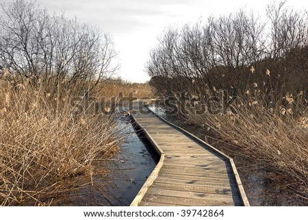 Wooden pathway over a swamp area in th early spring - stock photo