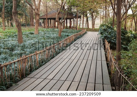 Wooden pathway perspective. Walking around famous West Lake park in Hangzhou city center, China - stock photo